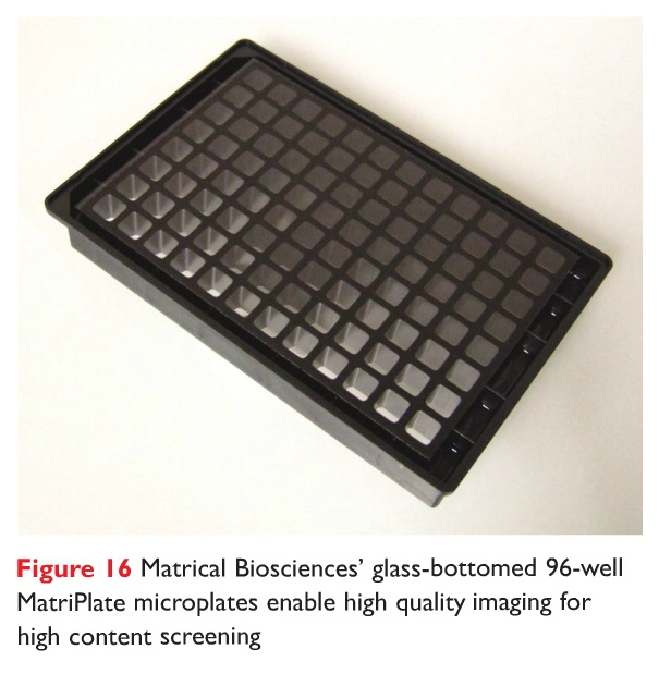 Figure 16 Matrical Biosciences' glass-bottomed 96-well MatriPlate microplates enable high quality imaging for high content screening