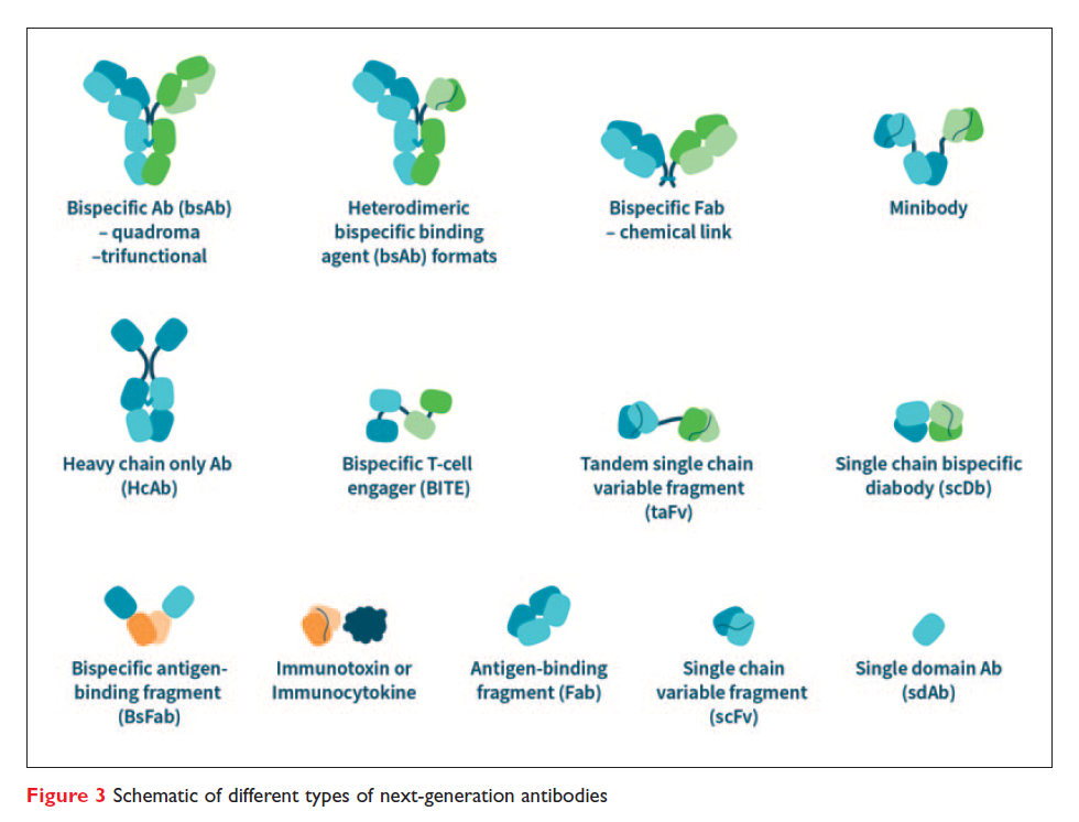 Figure 3 Schematic of different types of next-generation antibodies