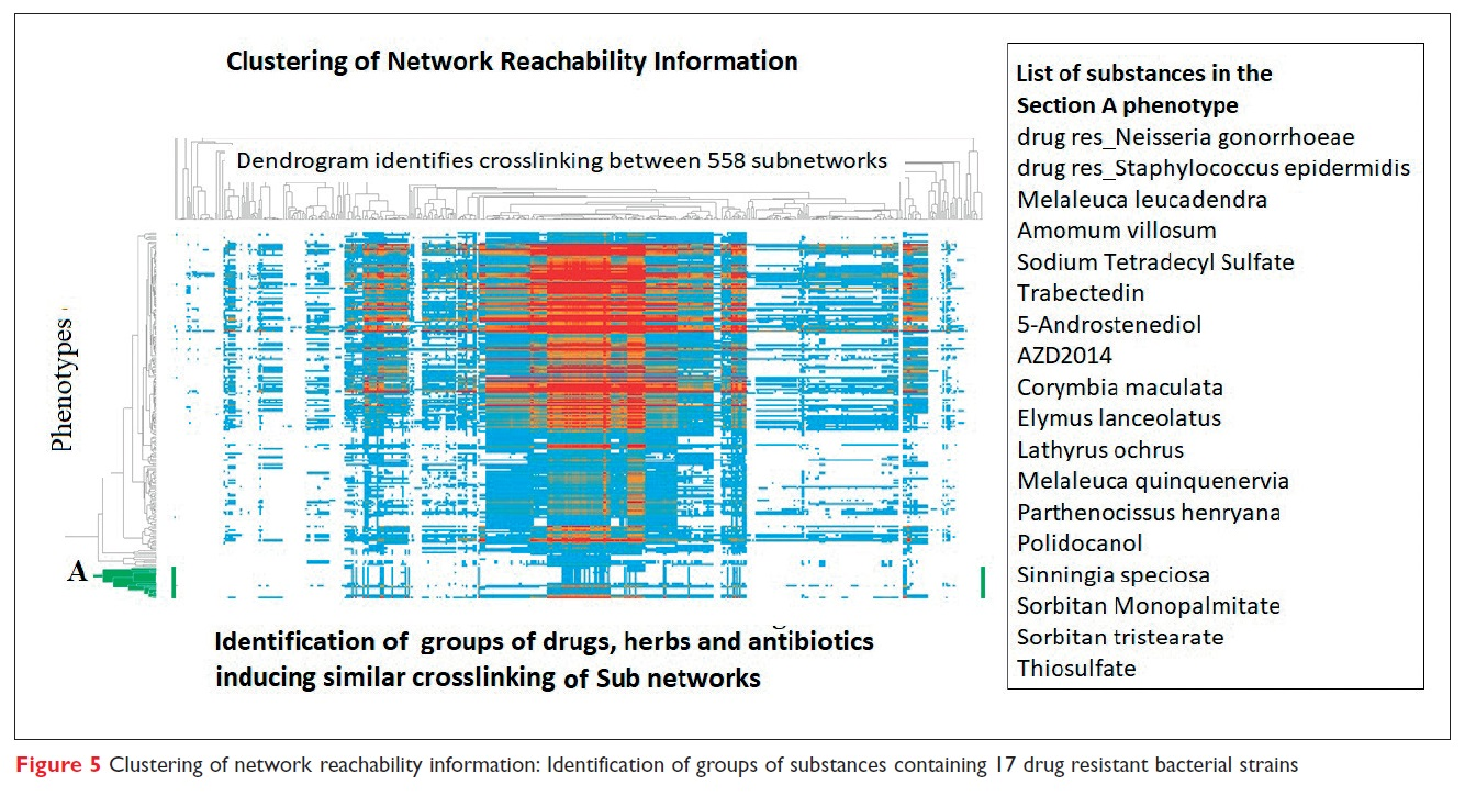 Figure 5 Clustering of network reachability information: Identification of groups of substances containing 17 drug resistant bacterial strains