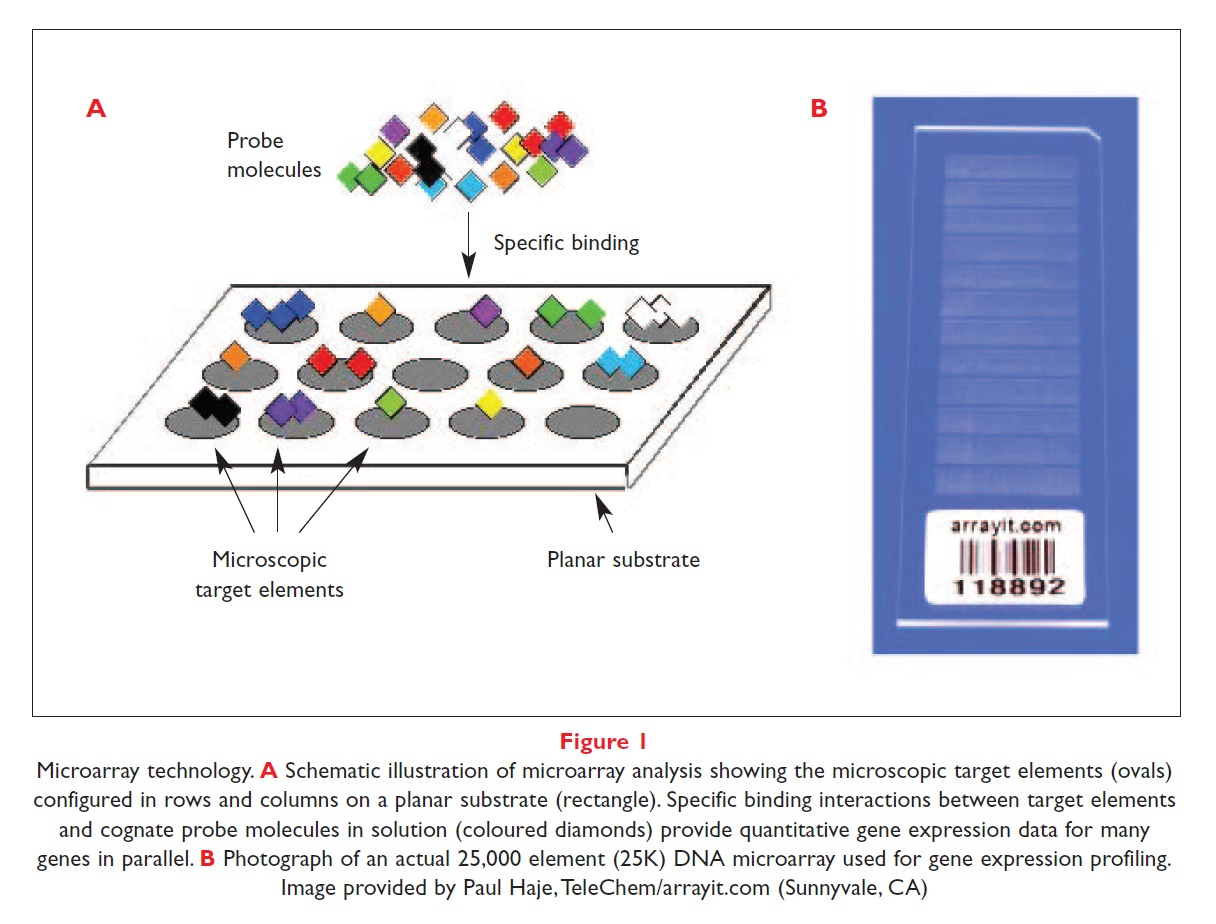 Figure 1 Microarray technology, schematic illustration of microarray analysis, and photograph of 25000 element DNA microarray