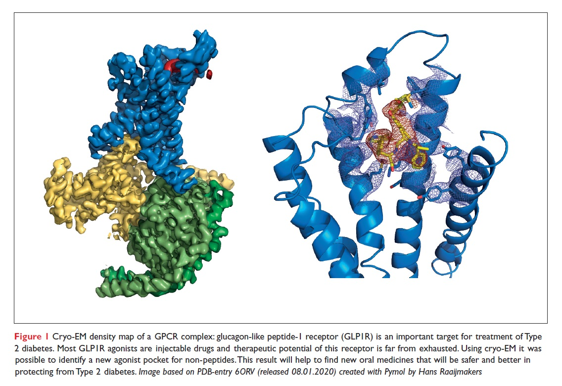 Figure 1 Cryo-EM density map of a GPCR complex