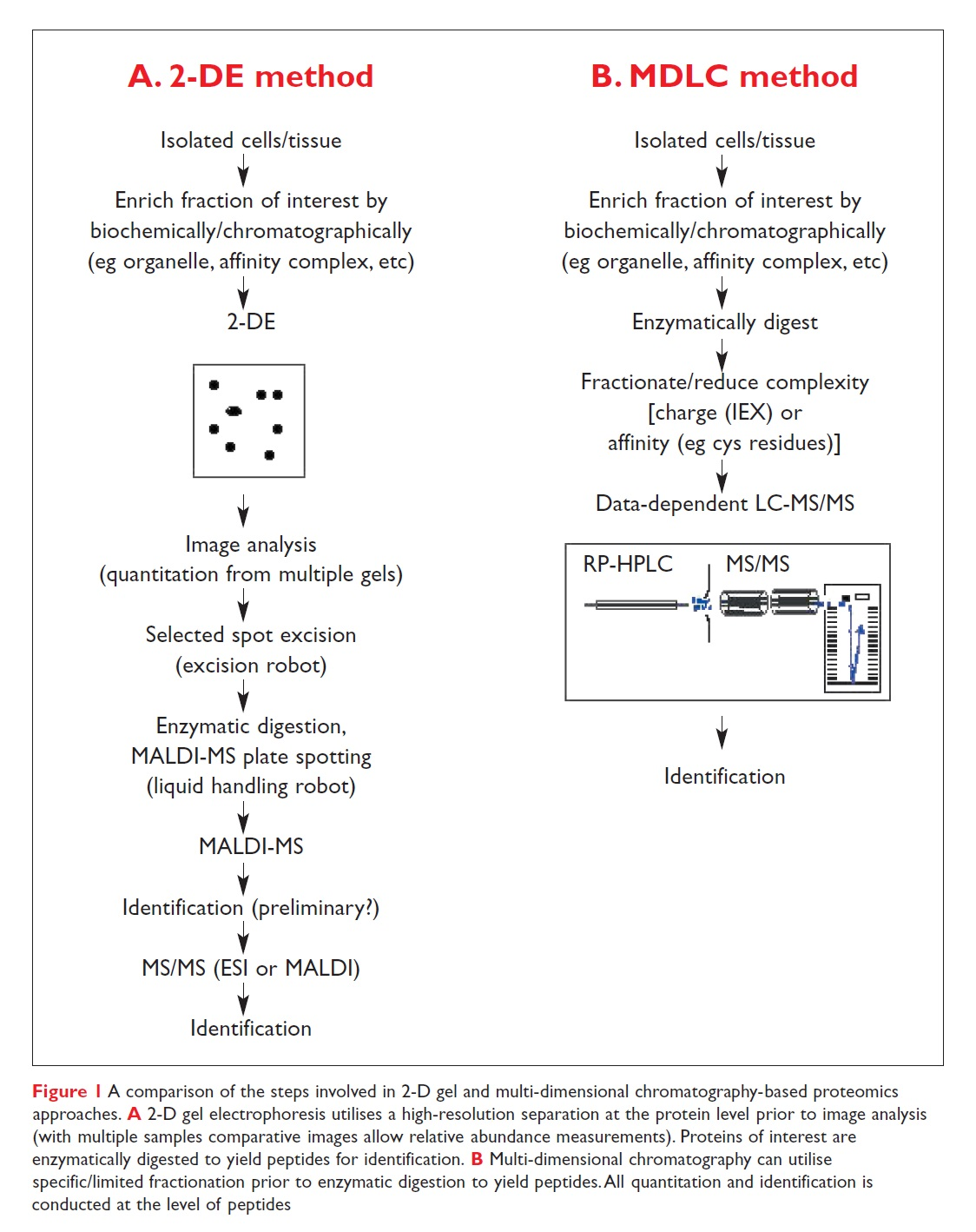 Figure 1 A comparison of the steps involved in 2D gel and multi-dimensional chromatography-based proteomics approaches