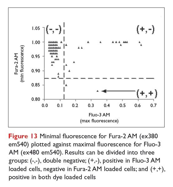 Figure 13 Minimal fluorescence for Fura-2 AM plotted against maximal fluorescence for Fluo-3 AM