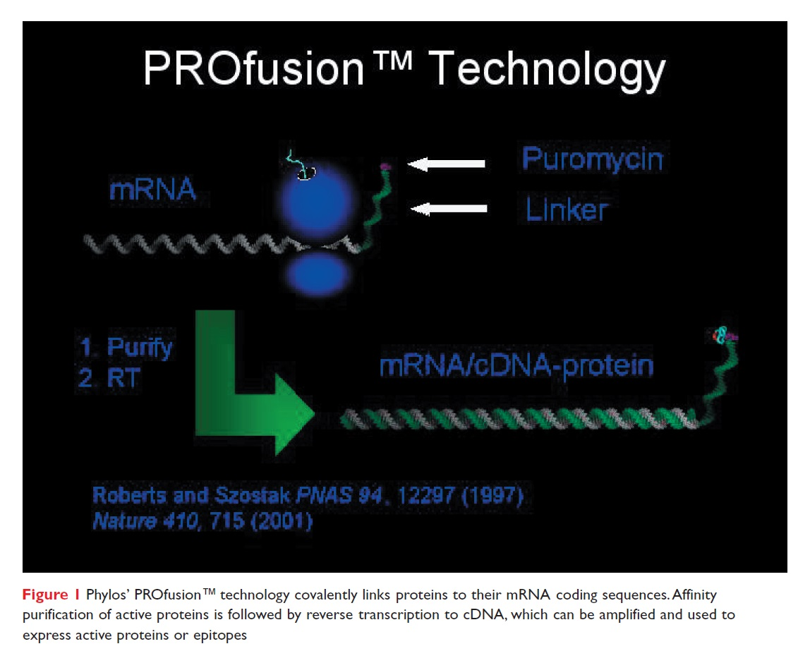 Figure 1 Phylos' PROfusion technology covalently links proteins to their mRNA coding sequences