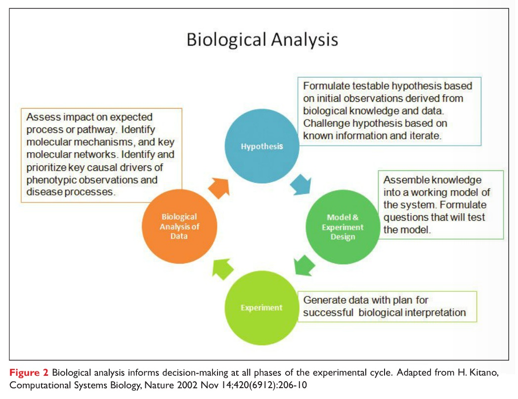 Figure 2 Biological analysis informs decision making at all phases of the experimental cycle