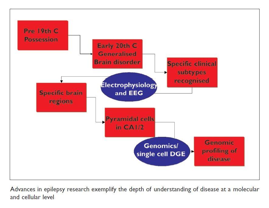 Figure 1 Advances in epilepsy research exemplify the depth of understanding of disease at a molecular and cellular level