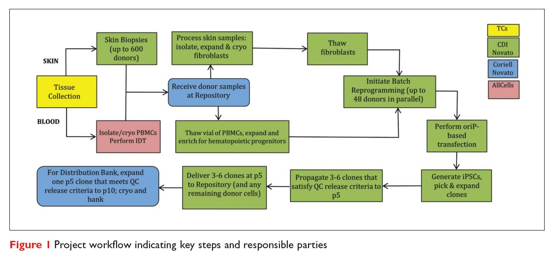 Figure 1 Project workflow indicating key steps and responsible parties