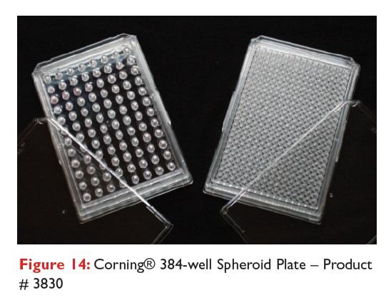 Figure 14 Corning 384-well Spheroid plate