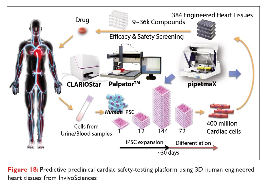 Figure 18 Predictive preclinical cardiac safety-testing platform using 3D human engineered heart tissues from InvivoSciences