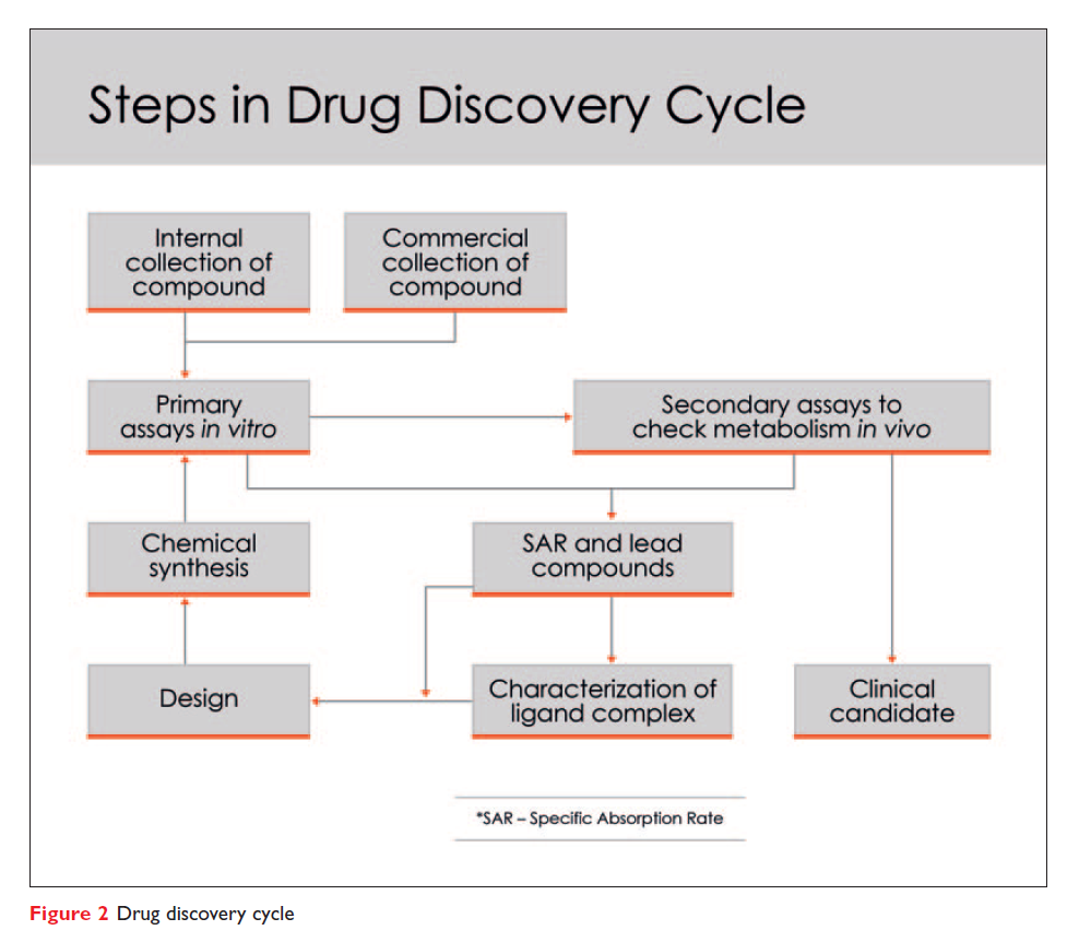 Figure 2 Steps in drug discovery cycle