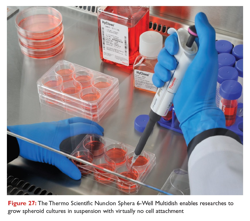 Figure 27 The Thermo Scientific Nunclon Sphera 6-Well Multidish enables researchers to grow spheroid cultures in suspension