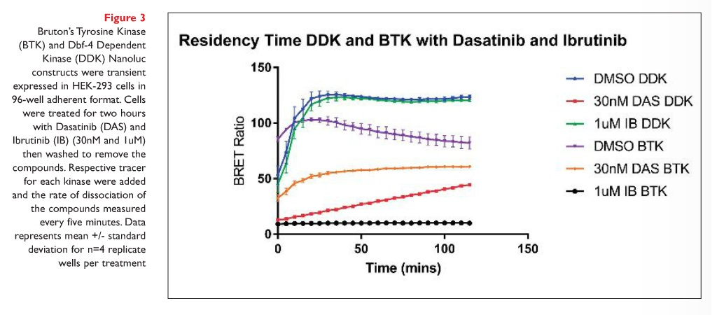 Figure 3 Bruton's Tyrosine Kinase (BTK) and Dbf-4 Dependent Kinase (DDK) Nanoluc constructs were transient expressed in HEK-293 cells in 96-well adherent format