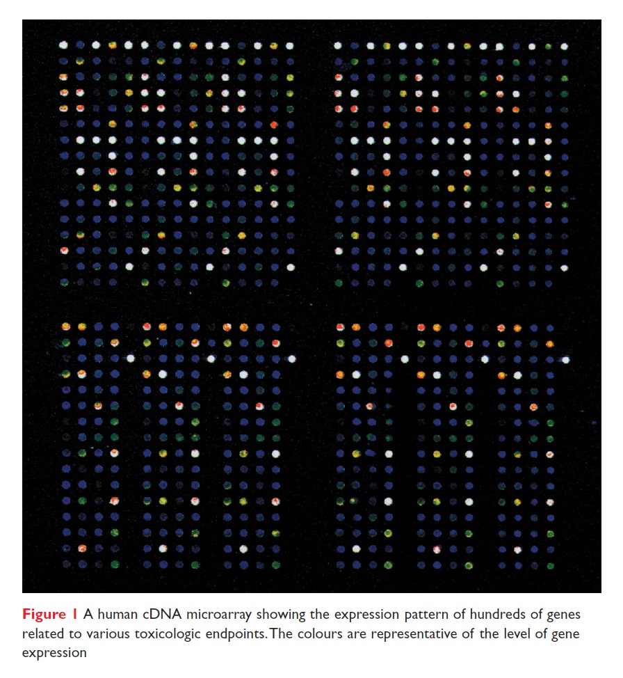 Figure 1 A human cDNA microarray showing the expression pattern of hundreds of genes