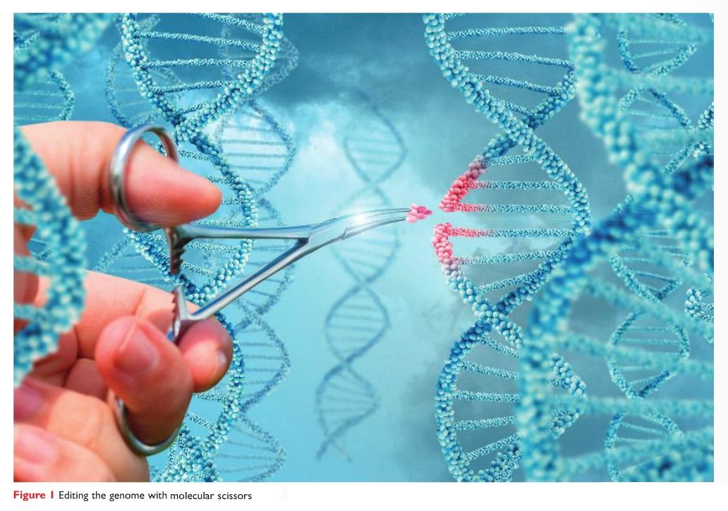 Figure 1 Editing the genome with molecular scissors