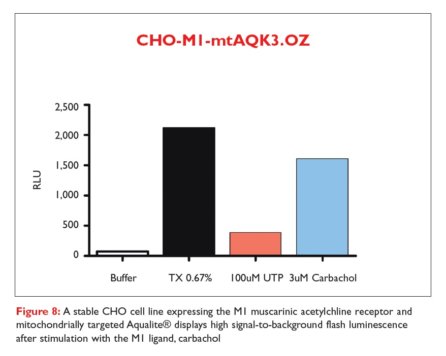 Figure 8 A stable CHO cell line expressing the MI muscarinic acetylchline receptor