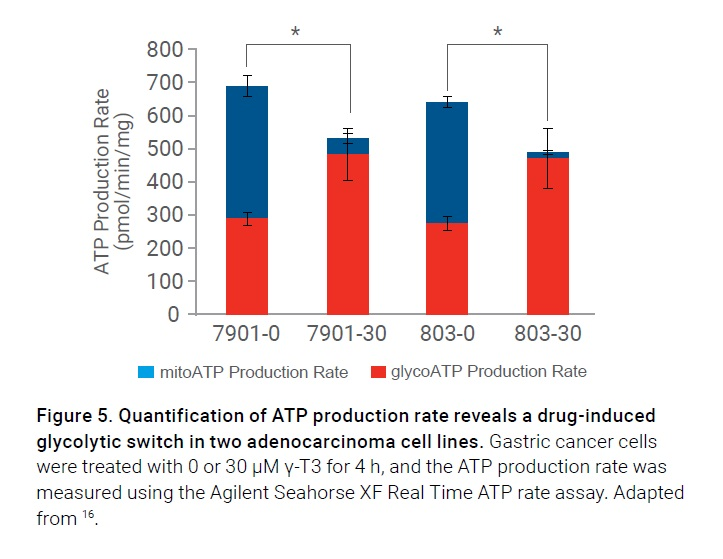 Figure 5 Quantification of ATP production rate reveals drug-induced glycolytic switch