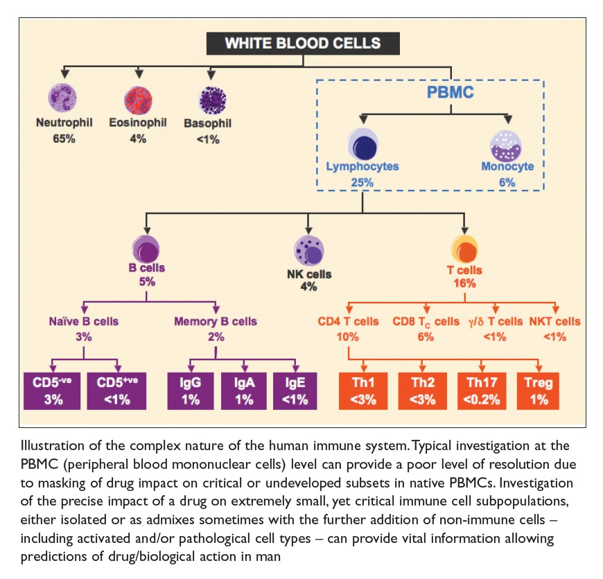 Figure 1 Illustration of the complex nature of the human immune system, white blood cells
