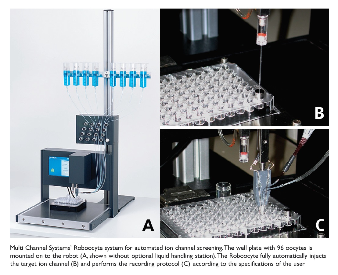 Image 9 Multi Channel Systems' Robocyte system for automated ion channel screening