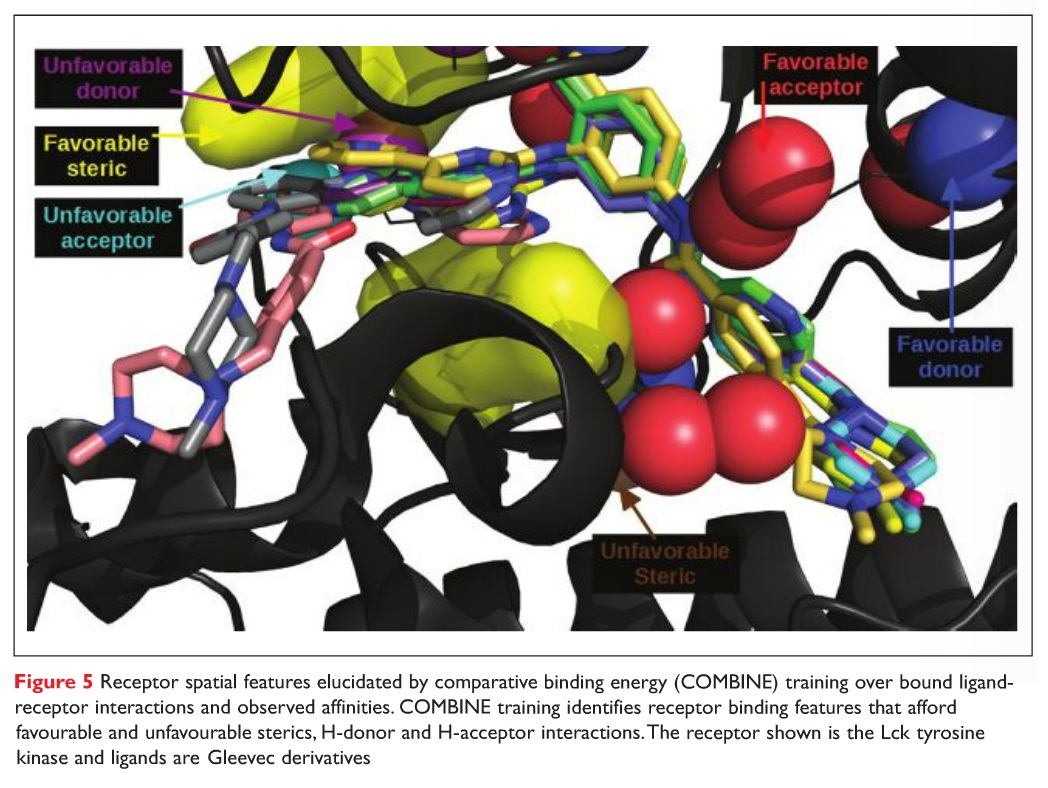 Figure 5 Receptor spatial features elucidated by comparative binding energy (COMBINE) training