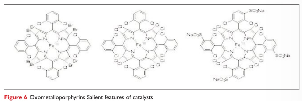 Figure 6 Oxometalloporphyrins Salient features of catalysts