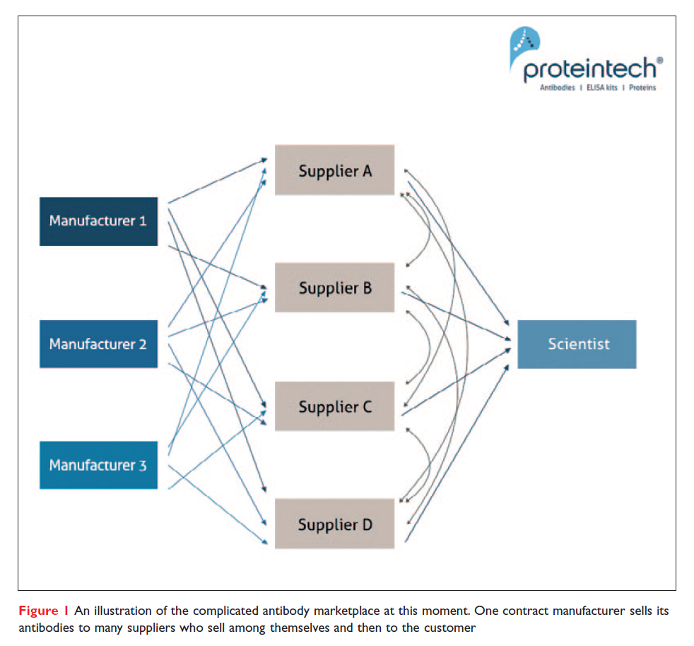 Figure 1 An illustration of the complicated antibody marketplace