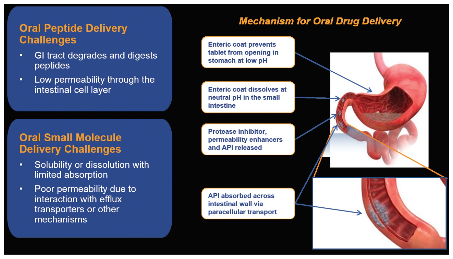 Image 1 Mechanism for Oral Drug Delivery Infographic