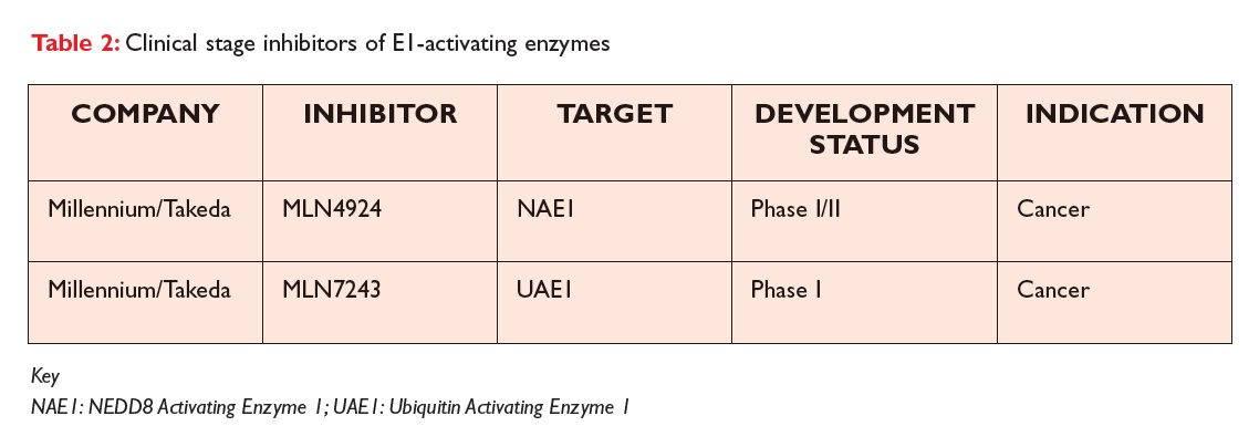 Table 2 Clinical stage inhibitors of E1-activating enzymes