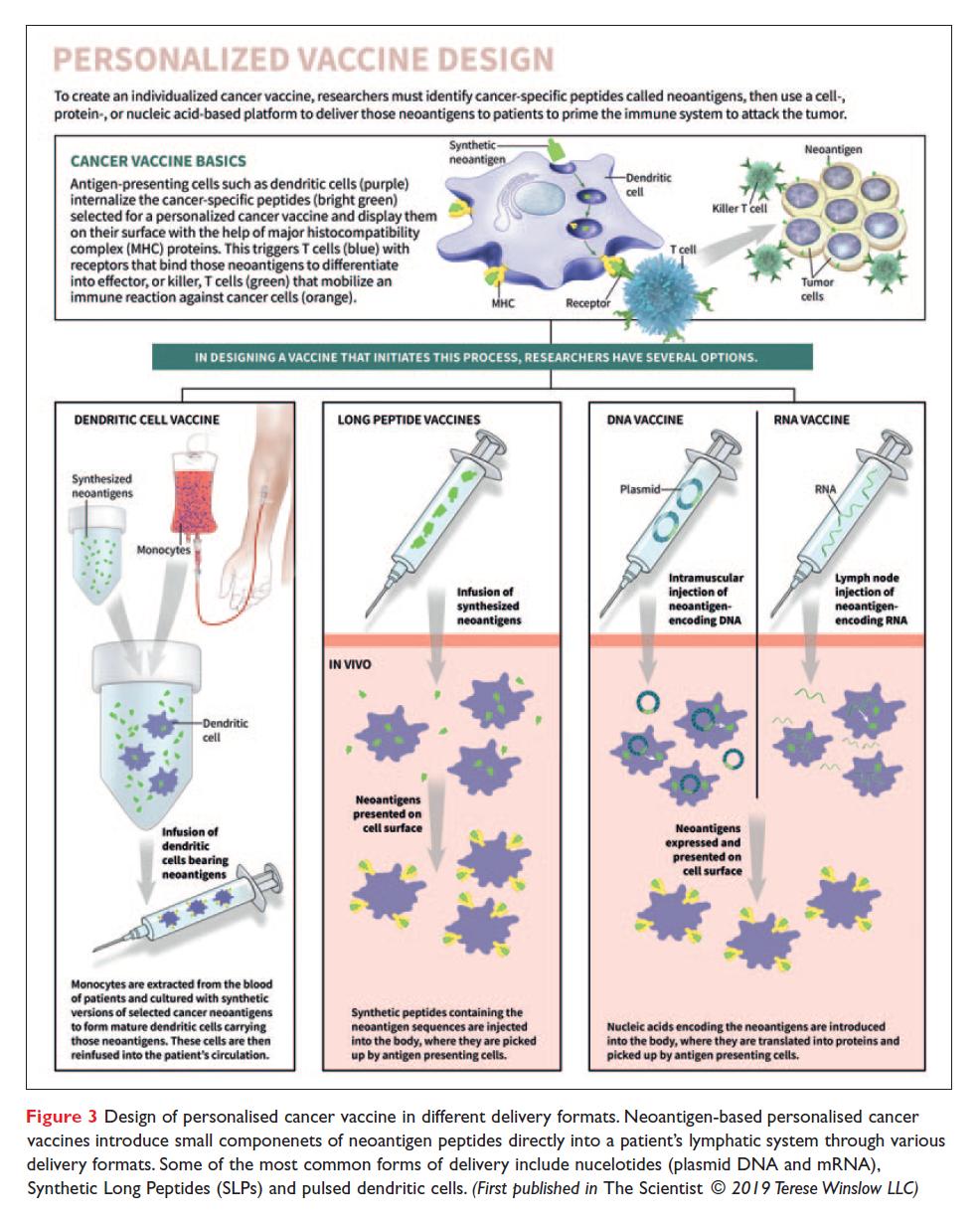 Figure 3 Personalized vaccine design