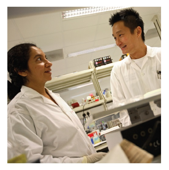 Image 2 Scientists working in a lab in Singapore