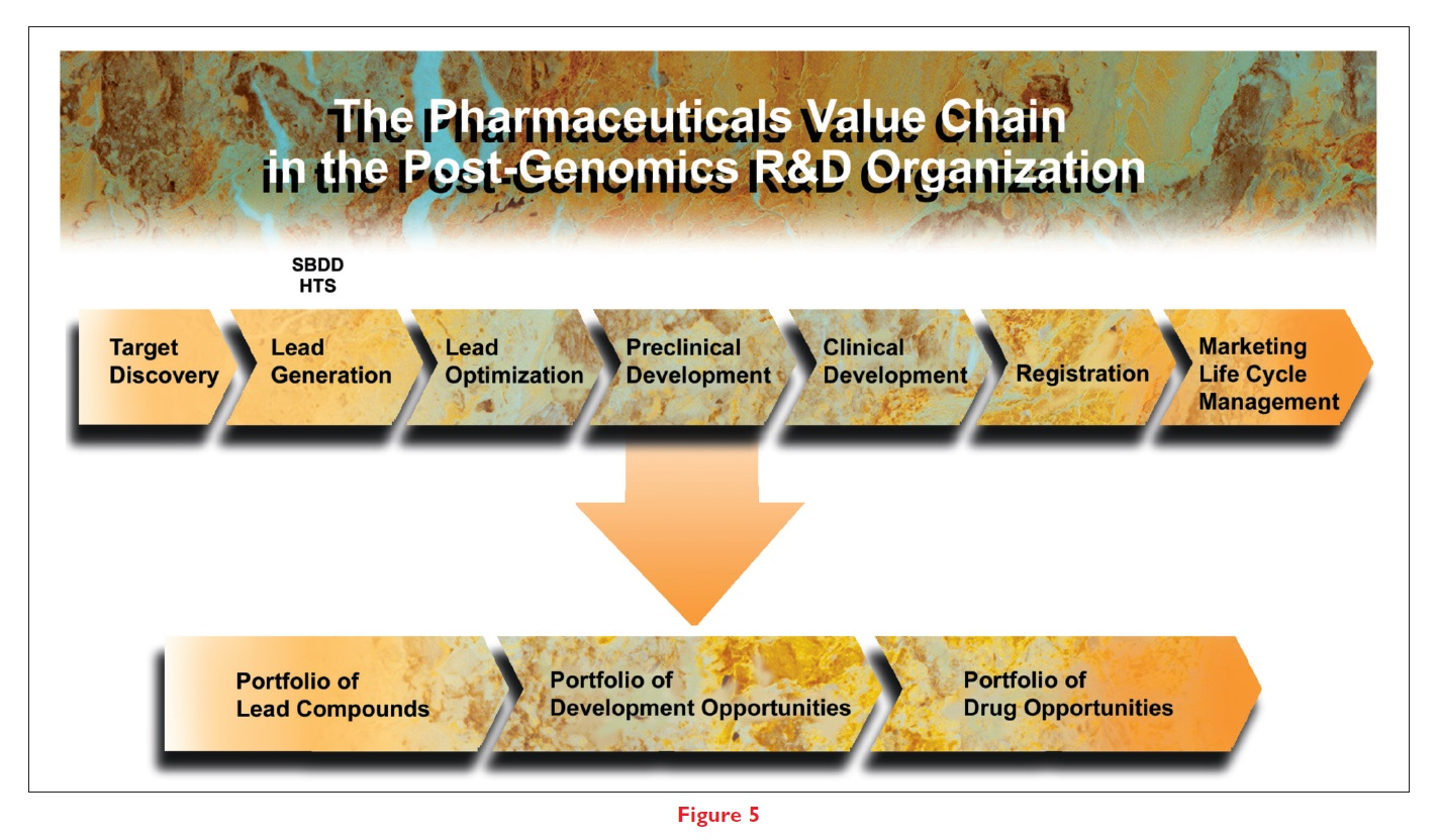 Figure 5 The pharmaceuticals value chain in the post-genomics R&D organization