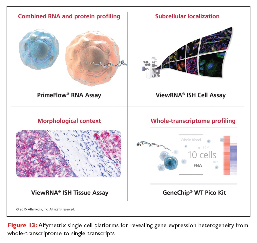Figure 13 Affymetrix single cell platforms for recealing gene expression heterogeneity from whole-transcriptome to single transcripts