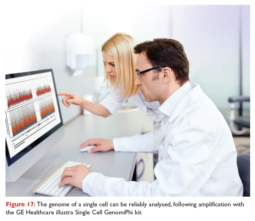 Figure 17 The genome of a single cell can be reliably analysed, following amplification with the GE Healthcare illustra Single Cell GenomiPhi kit