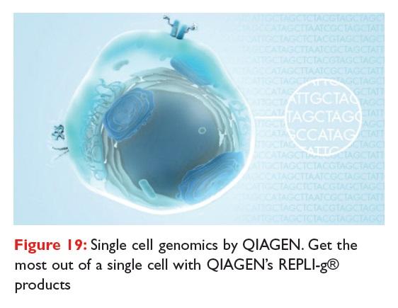 Figure 19 Single cell genomics by QIAGEN