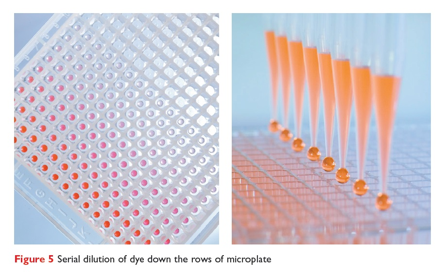 Figure 5 Serial dilution of dye down the rows of microplate