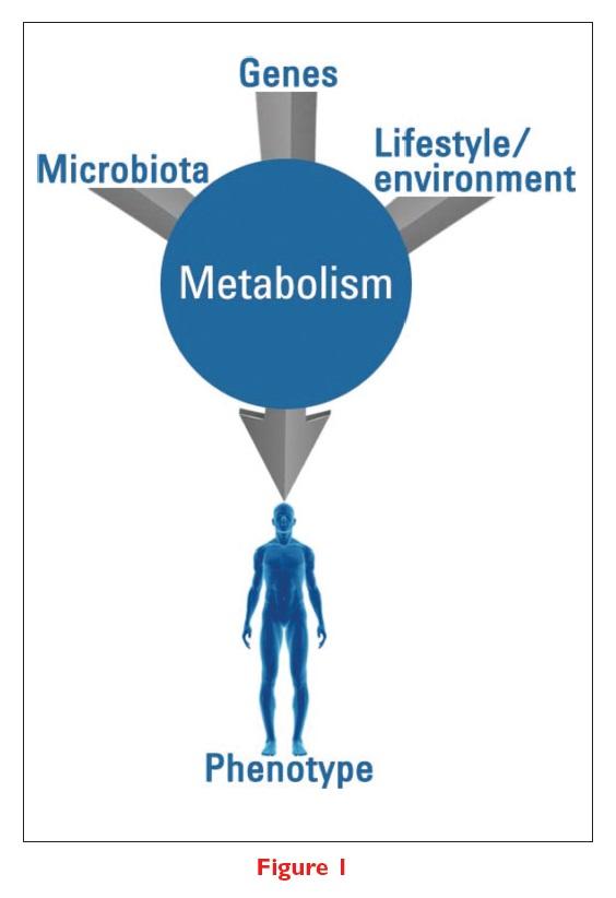 Figure 1 Metabolomics diagram, Microbiota, genes, lifestyle/environment, metabolism and phenotype