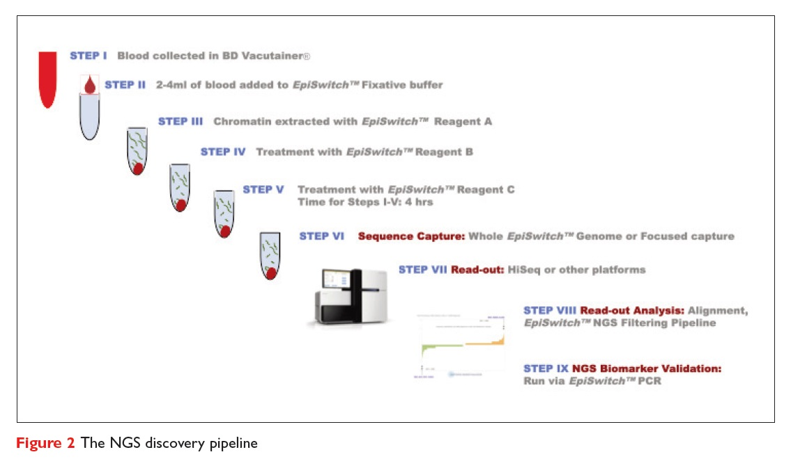 Figure 2 The NGS discovery pipeline