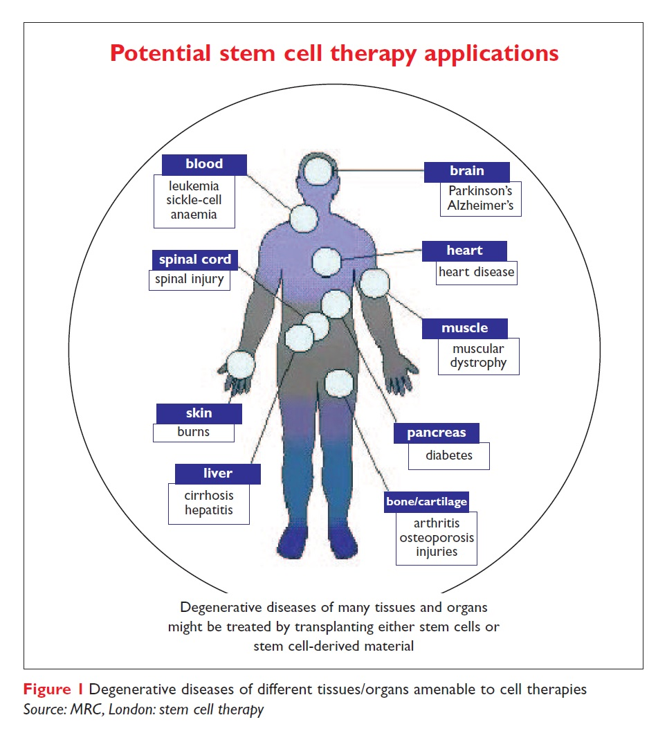 Stem Cell Pharmaceutics Drug Discovery World Ddw