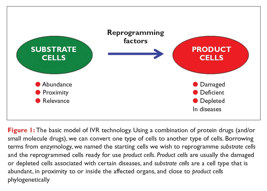 Figure 1 The basic model of IVR technology. Using a combinatino of protein drug we can convert one tpe of cells to another type of cells