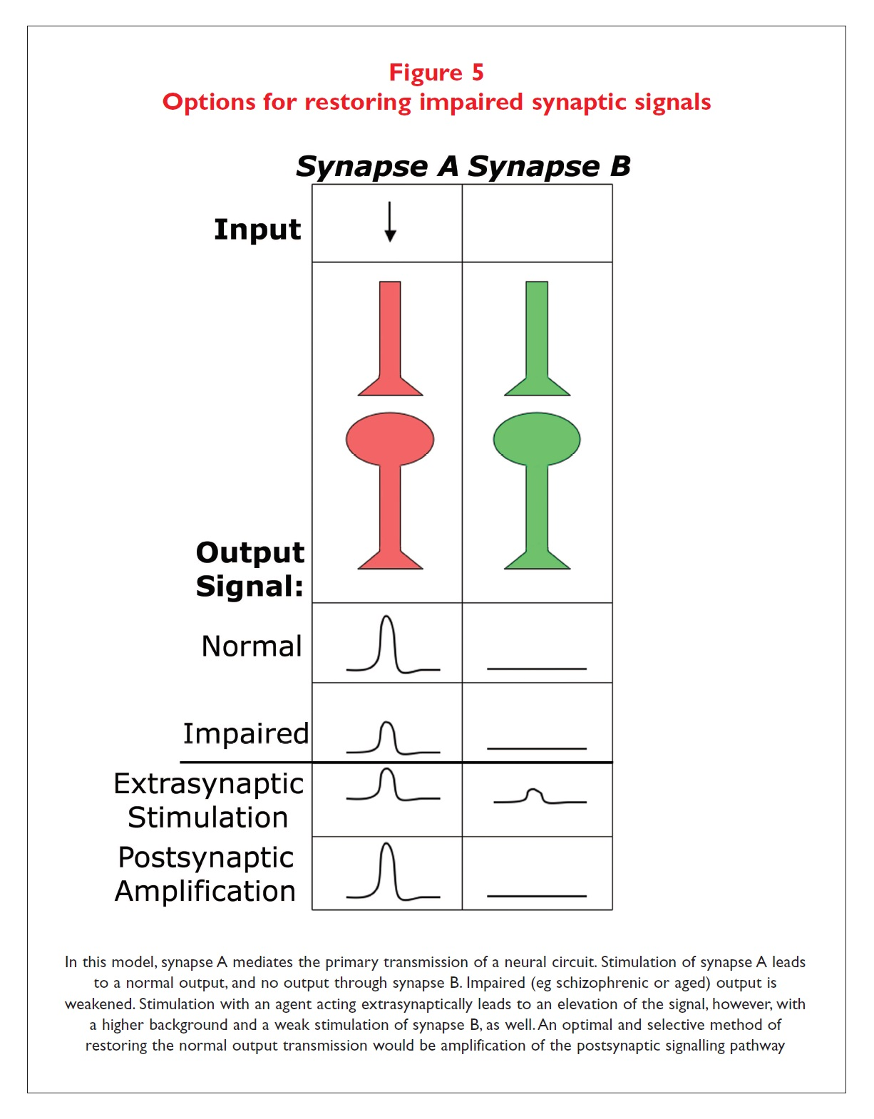 Figure 5 Options for restoring impaired synaptic signals